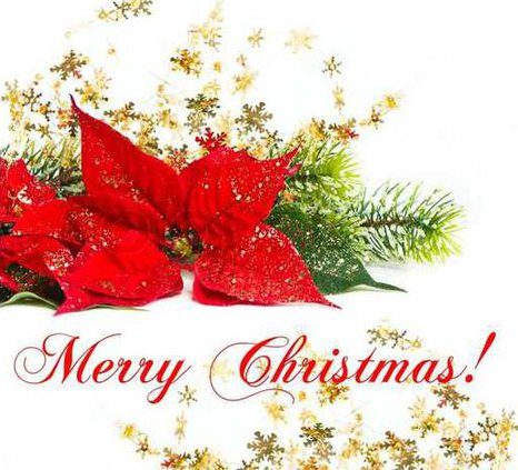 2578038-christmas-flower-with-golden-decoration
