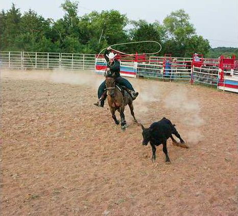 The Bullwhip Rodeo