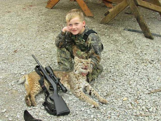 bobcat boy