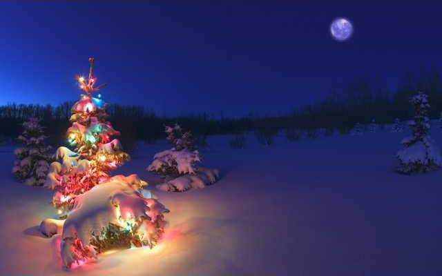 christmas-tree-lights-snow-wallpaper-2