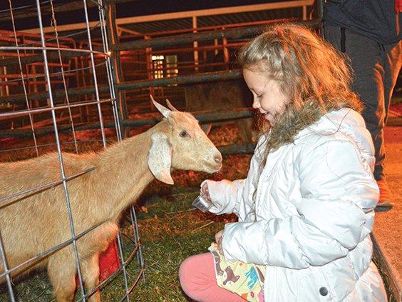 1  McKenzie Acre, goat.jpg