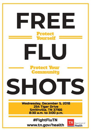 DeKalb County Flu flyer.pdf