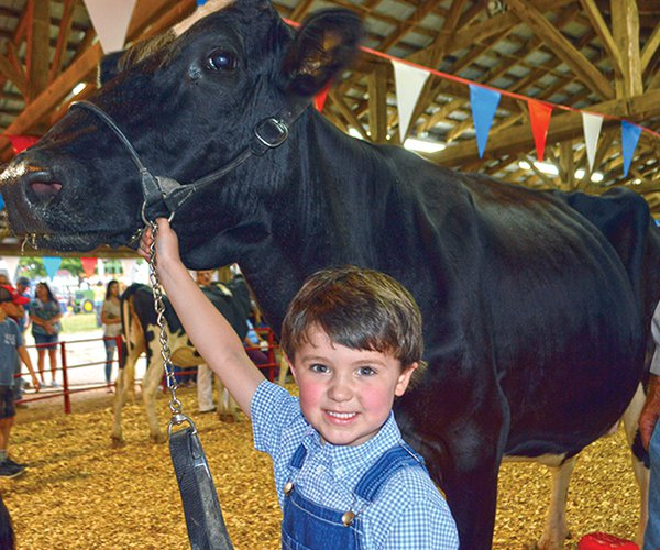 Fair-Black Cow & kid.jpg