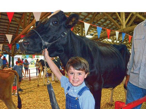 Fair-Black Cow & kid.jpg