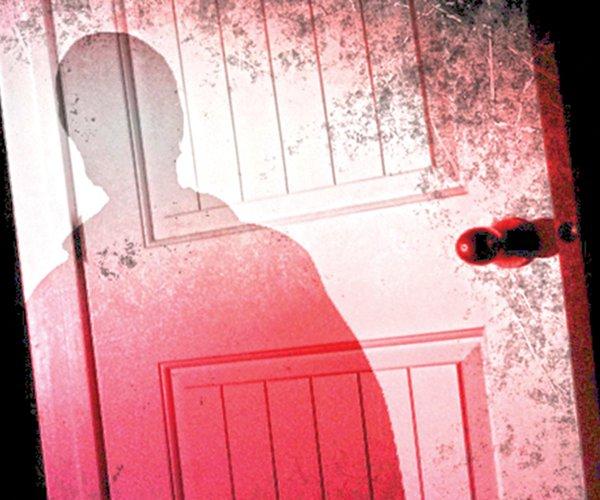 Domestic assault graphic.jpg