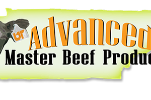 Master beef logo