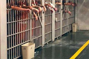 Jail statistics.jpg