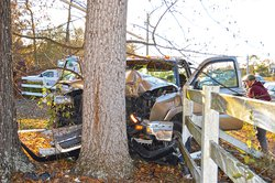 Guy hits tree4.jpg